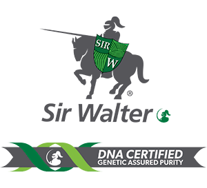 Sir Walter DNA Certified Logo