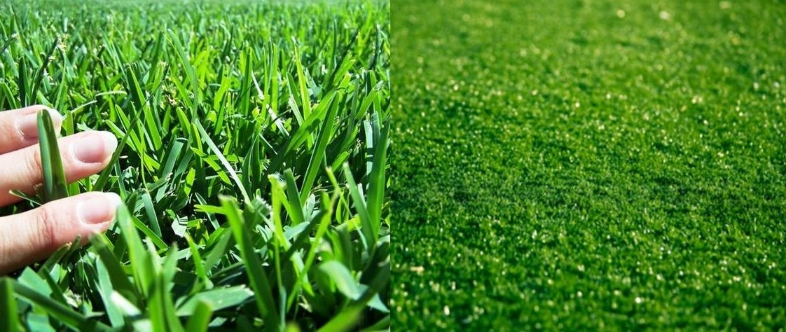 Comparing Real Grass Vs Artificial Turf