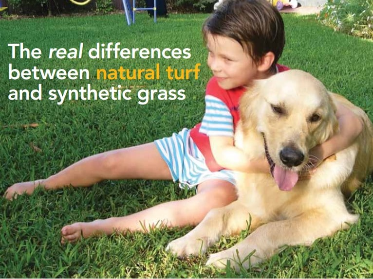 The real differences between natural turf and synthetic grass